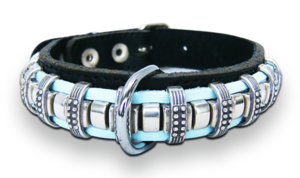 Qwispl halsband en riem
