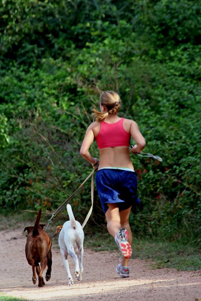 Sporten met je hond: Let op!