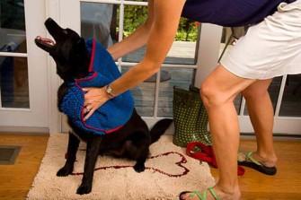 Schoon en fris met Soggy Doggy hondenhanddoek