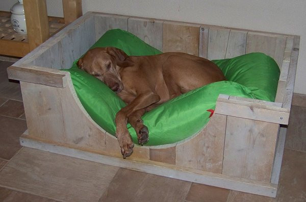 Hondenmand van steigerhout