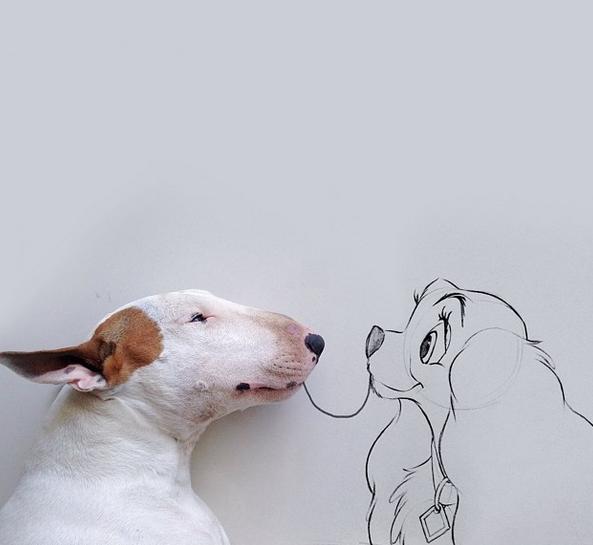 Wat doe je als je niks meer hebt, behalve je hond?