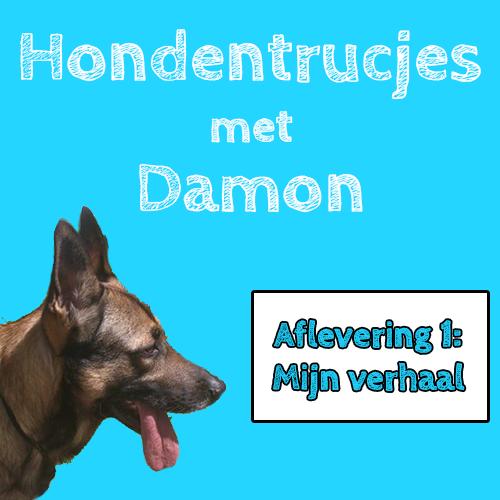 Hondentrucjes met Damon: Aflevering 1