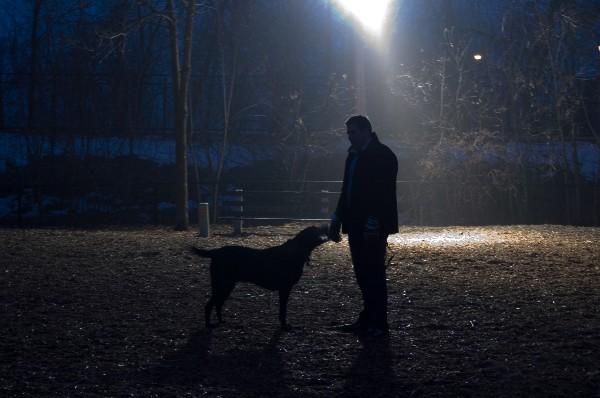 Je hond veilig uitlaten in het donker