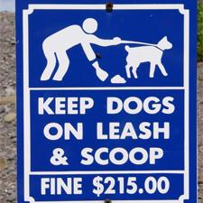 uitlaten honden