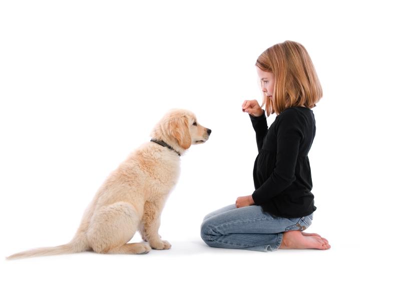 hondenwoordenboek kids