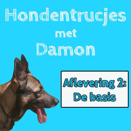Hondentrucjes met Damon aflevering 2!
