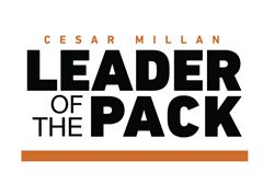 Cesar Millan Leader of the Pack, de eerste aflevering!