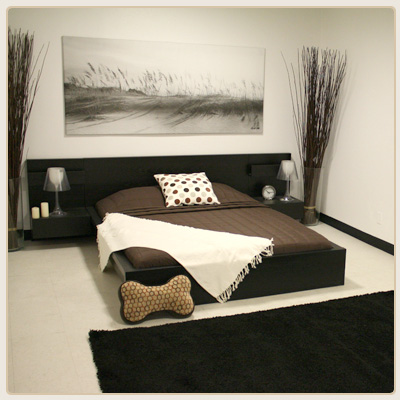 logeren in luxe d pet hotel hollywood hondenwoordenboek. Black Bedroom Furniture Sets. Home Design Ideas
